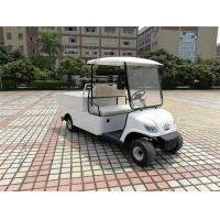 Quality Compact Electric Cargo Car , 2 Seater Electric Car With 2pcs Rear View Mirror for sale