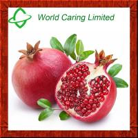 China High Quality Pomegranate hull extract punicalagin for cosmetics on sale