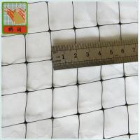 China Plastic Fence Netting/ B.O.P Netting/ Mesh Size 2cm*2cm/ PP/ Black on sale