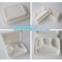 China blister packaging Packaging Tray, airline fast food trays with handle, cornstarch food trays on sale