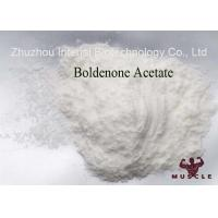 Quality Muscle Building Steroids Boldenone Acetate 2363-59-9 Raw Pharmaceutical Material for sale