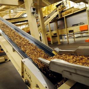 Quality Tobacco conveyor belt for sale