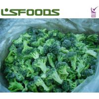 Quality frozen broccoli for sale