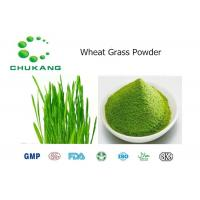 Quality Wheat Grass Powdered Herbal Extracts Triticum Aestivum L Natural Ingredients for sale