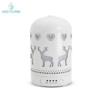 Quality Home 0.005 Gallon / Day 100ML Essential Oil Diffuser for sale