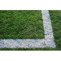 Quality Sports surface artificial grass for sale