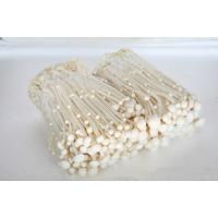 China all kinds of fresh mushroom .such as Shimeji White Shimeji Brown Oyester and so on. on sale