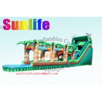 Quality Huge Double & Triple Stitches Outdoor Inflatable Long Water Slide With Bouncy Pool for sale