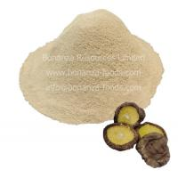 Quality Sell Freeze Dried Shiitake Mushroom Powder for sale