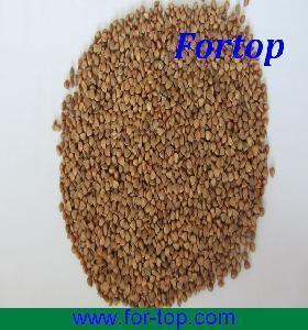 Quality Bulk Roasted Buckwheat Kernels for sale