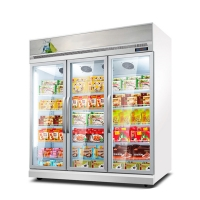 Quality Upright Freezer Philippines / Malaysia Used Commercial Ice Cream Display Freezers for sale