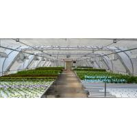 Quality small garden green house,Multispan Tunnel Greenhouse for Tomato Agricultural Green houses,fabric steel wire agriculture for sale