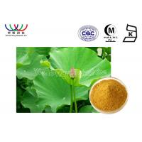 Quality Health Care Lotus Herbal Products , Organic Herbal Extracts Powder Food Grade for sale