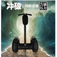 Quality 19 Inch Tire Two Wheel Electric Chariot Scooter Off Road Segway Outdoor Sports for sale