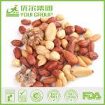 Salted mixed nut of roasted almond, cashew, peanut, walnut