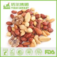 Buy Salted mixed nut of roasted almond, cashew, peanut, walnut at wholesale prices