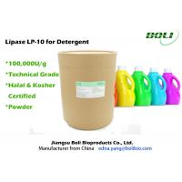 Quality Detergent Enzyme Powder Technical Grade , Lipase for Detergent Application for sale
