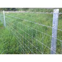 A temporary fence is installed in pasture that is made of star pickets.