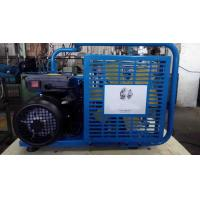 Quality Portable 220V Electric Breathing Air Compressor for Sale for sale