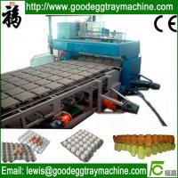Quality Egg trays production line best price for sale