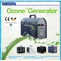 Quality Car portable air purifier Hotel Ozone Machine / air cooling auto ozone generator for sale