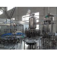 Quality Plastic Bottle Juice Filling Machine 6000BPH Ectric Cans Hot Filling Machine for sale