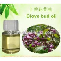 Quality CAS NO.8015-73-4 clove bud oil bulk pure natural with low prices plant extract plant essential oil for sale