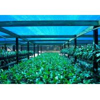 Quality Greenhouse Shade Net ,Agricultural Shade Cloth For Flower Farm for sale
