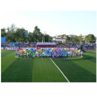 Quality 2011 hot sales grass for football game for sale