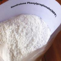 Quality Durabolin CAS NO. 62-90-8 Steroid Hormone Powder Nandrolone Phenylpropionate For Muscle Gain for sale