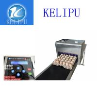 Quality Easy Operation Egg Inkjet Coding Printer / Thermal Inkjet Printer For Number for sale