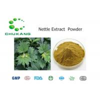 Quality 100% Natural Nettle Root Extract Medicinal Herbs Nettle Root Extract for sale