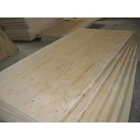 China pine core pine Plywood on sale
