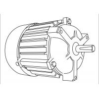 Quality IP55 Protection Asynchronous Electric Motor 3000RPM 1HP Copper Wire Winding for sale