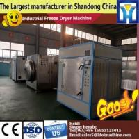 Quality freeze dryer lyophilizer equipment for sea cucumber   commercial food freeze dryer    freeze dry machine for sale