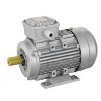 Quality MS Series Three-Phase Ac Electric Motor With Aluminium Housing for sale