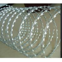 Razor Barbed Wire Anti Climb Wall Spikes Hot Dipped Metal