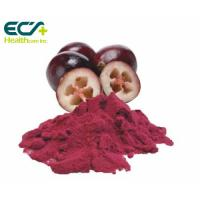 Quality Red Cranberry Fruit Powder , Natural Food Supplement Powder Prevent Cancer for sale