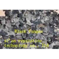 Quality Organic Black Fungus for sale