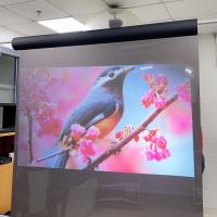 Projection Screen Vinyl Fabric Korea Touch Transparent Rear Projection Film Reflective