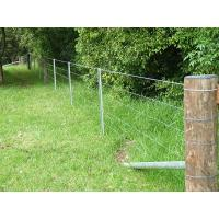 The forest is surrounded by fence that is made of steel wire and star pickets.