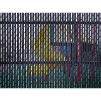 The chain link fence with slat is used in the amusement park.
