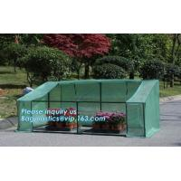 Quality agricultural cheap green house,home garden green house, small garden house,durable waterproof aluminium winter garden for sale