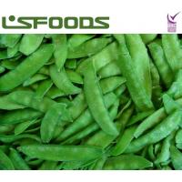 Quality new crop frozen IQF pea pods for sale