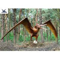 Quality Handmade / Assembling Pterosaurs Realistic Dinosaur Statues Width 5 Meters for sale