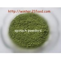 Quality spinach powder 001 for sale