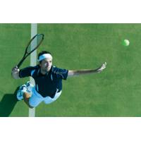 Quality Tennis court lawn for sale