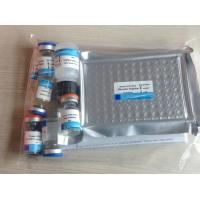 Quality Rat Aspartate aminotransferase( AST) ELISA Kit for sale