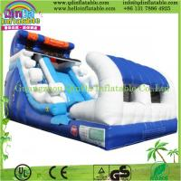 China inflatable water slide for adult,inflatable slide for adult,giant inflatable pool slide on sale