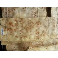 Quality Mappa Burls Wood Veneer for sale